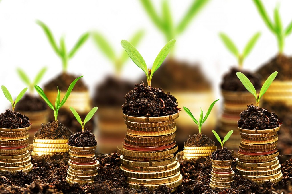 Investment Ideas in India