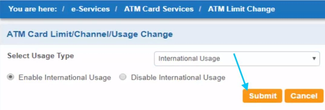 enable international usage in sbi net banking