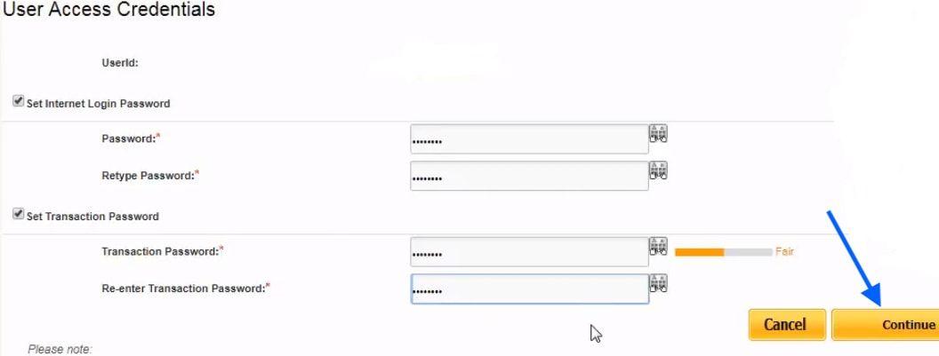 set login and transaction and login password pnb
