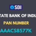 sbi pan number