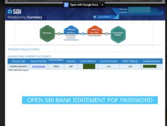 Open SBI Bank Statement PDF Password