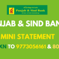 Punjab And Sind Bank Mini Statement Number